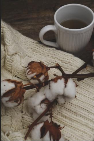 chá de folha de algodão